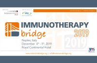 Immunotherapy Bridge 2019
