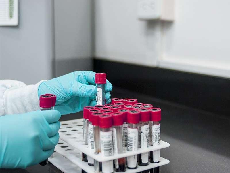 Epigenetica e immunoterapia
